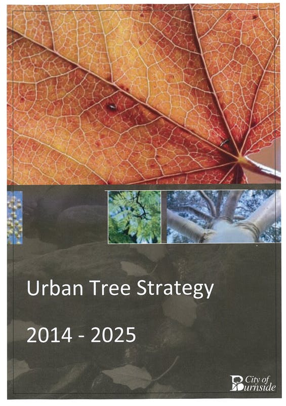 Urban Tree Strategy 2014-2025 Cover