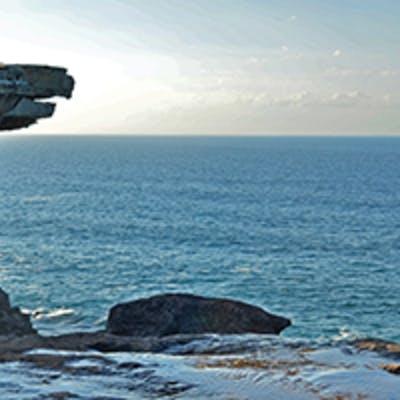 Eagle Rock, Royal National Park. Photo: G Dunnett, OEH