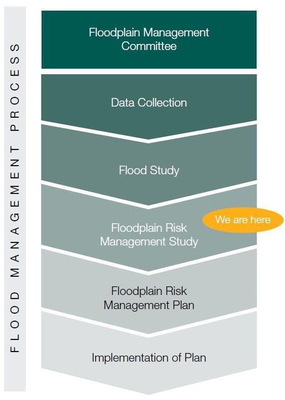 Lt Creek Flood Study Planning Process Chart