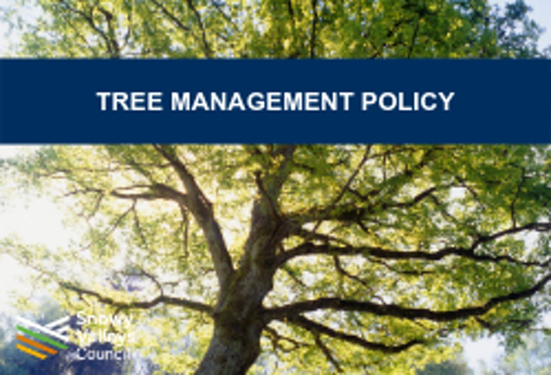 Tree management policy front page image
