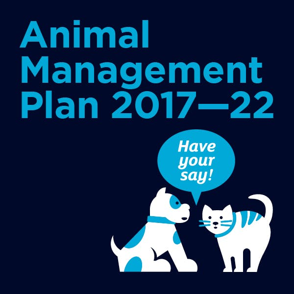Consultation animal management square web banner draft3