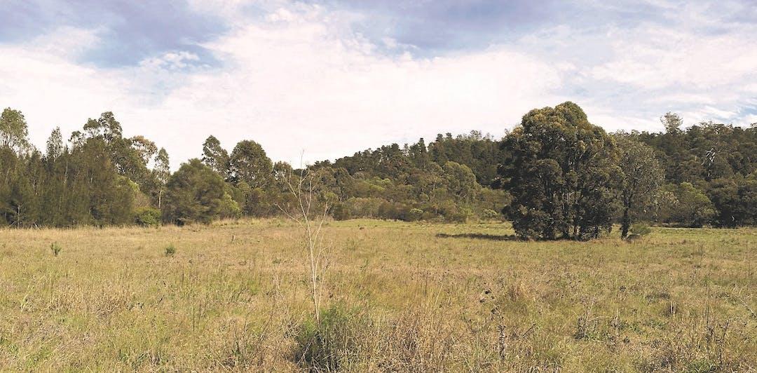 Draft landscape masterplan hyland road reserve low res