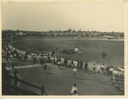Cricket on Marrickville Oval