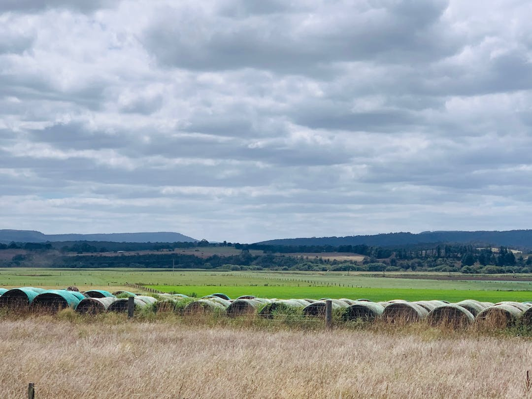 Foreground, haybales, river flat fenced green paddocks, tree lined river course, Background, undulating hills and densely tree covered mountains, light grey cloudy sky