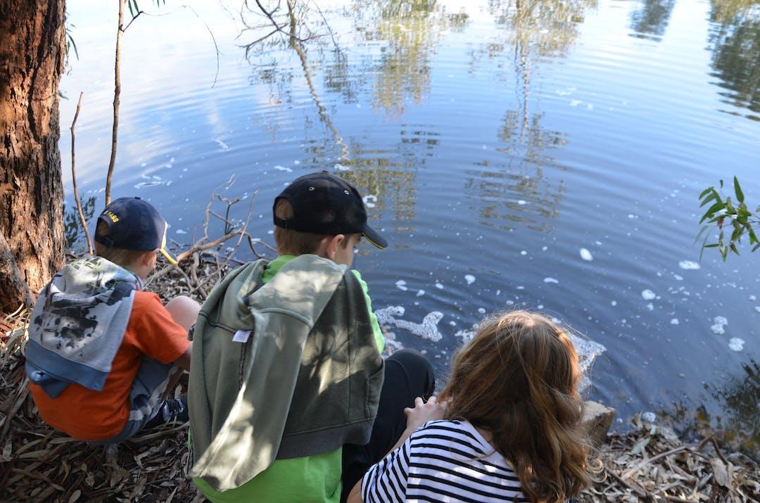children looking at pond
