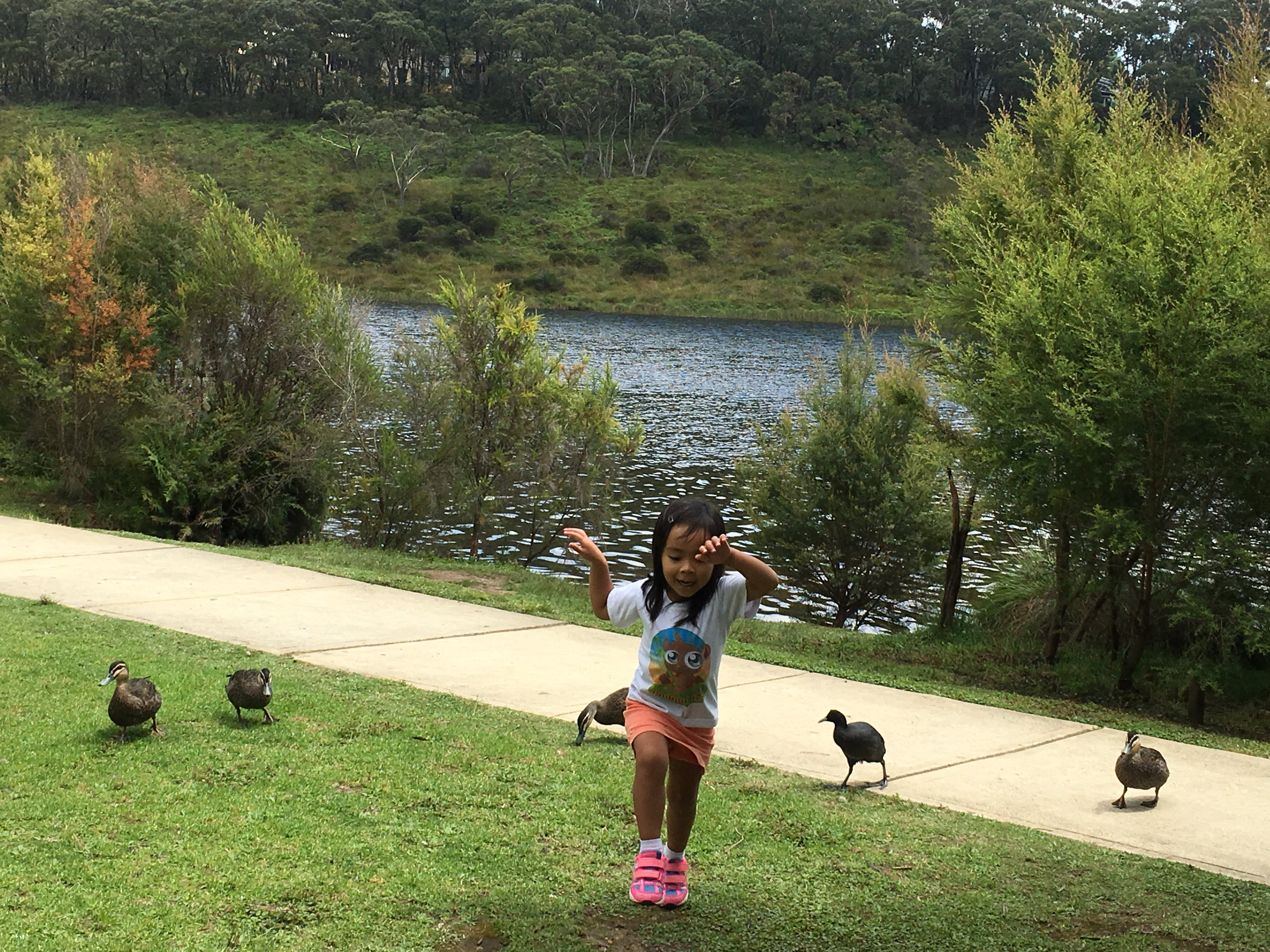 When you see your daughter having a good time making friends with the ducks at Wentworth Falls Lake