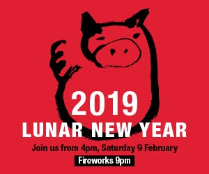 14139 2019 Lunar New Year Celebration Mrec 300x250 v2
