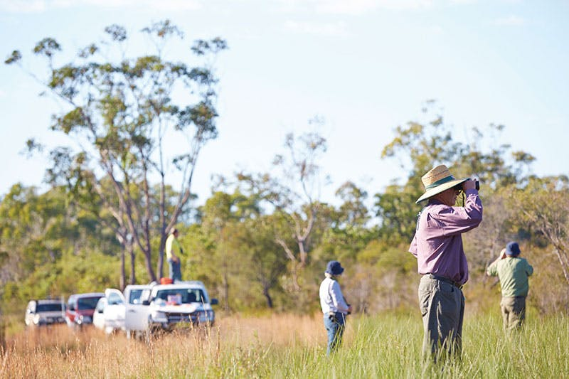 The Nature Nomads contributing to bird studies in the Bundjalung National Park. Photo credit: N Cubbin, OEH.
