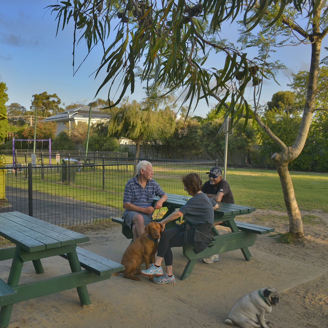 Carrington Park - Enviro-scape Master Plan | Your Voice Nedlands