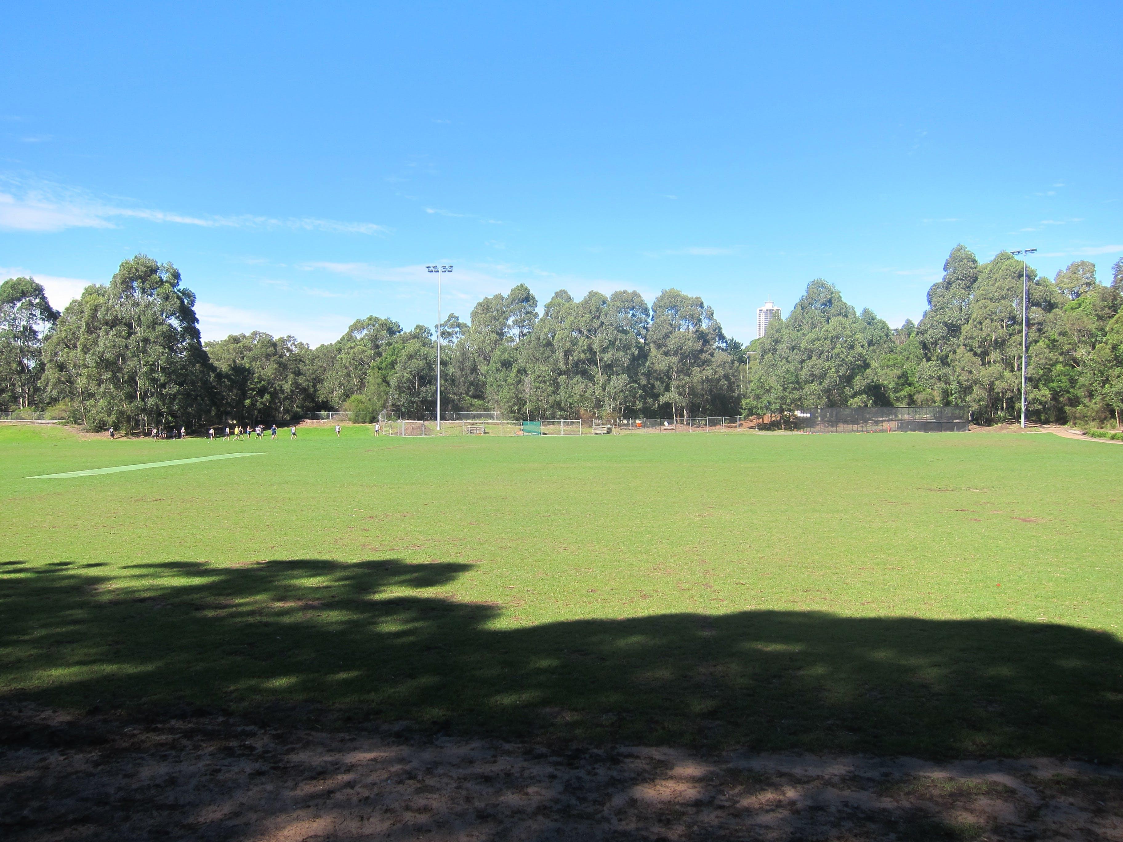 Artarmon Reserve sportsground