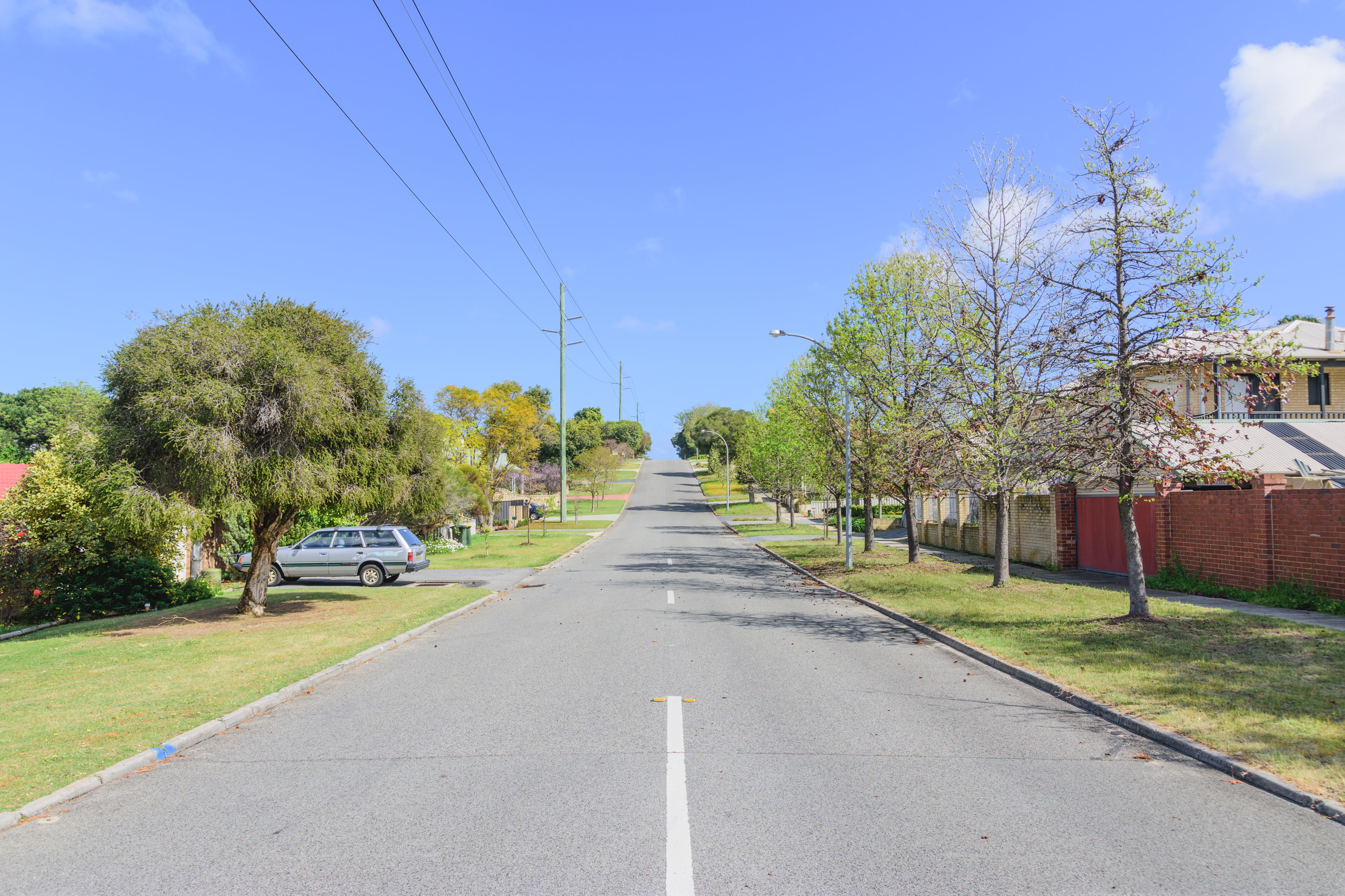 Streetscape with few trees.