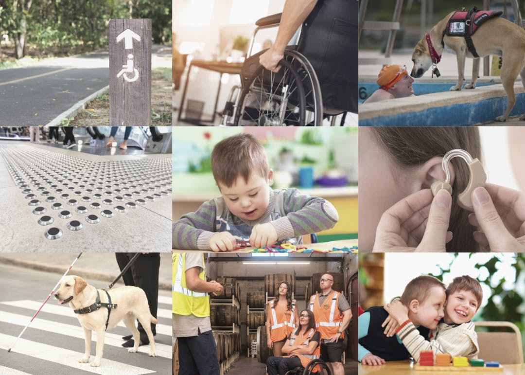 Collage of images - disabled pathway signage, wheelchair, service dog greeting person in a swimming pool