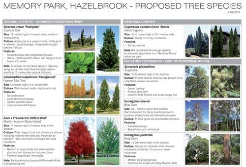 Memory Park Tree Brochure 1
