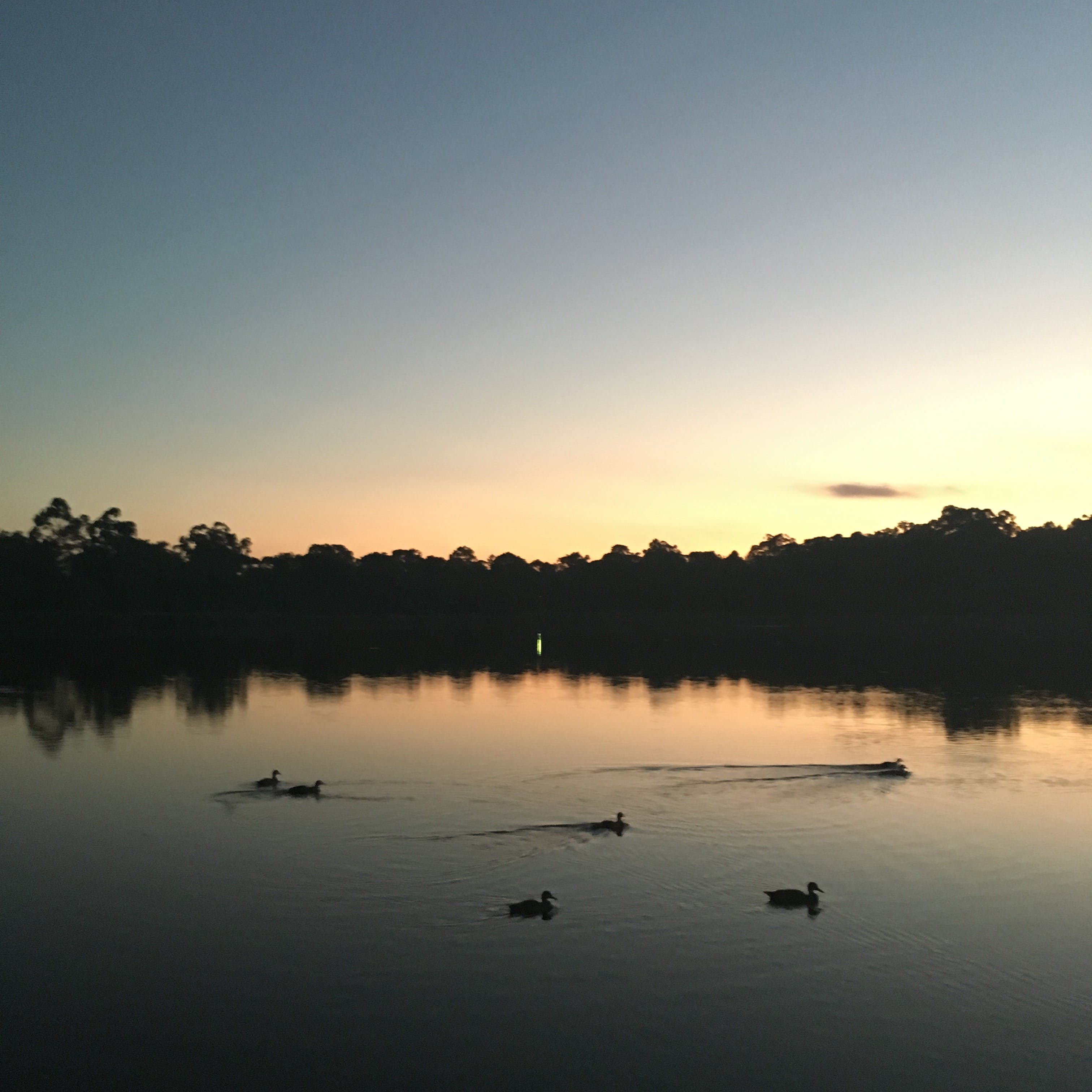 Enjoying seeing the sun set over Glenbrook Lagoon.