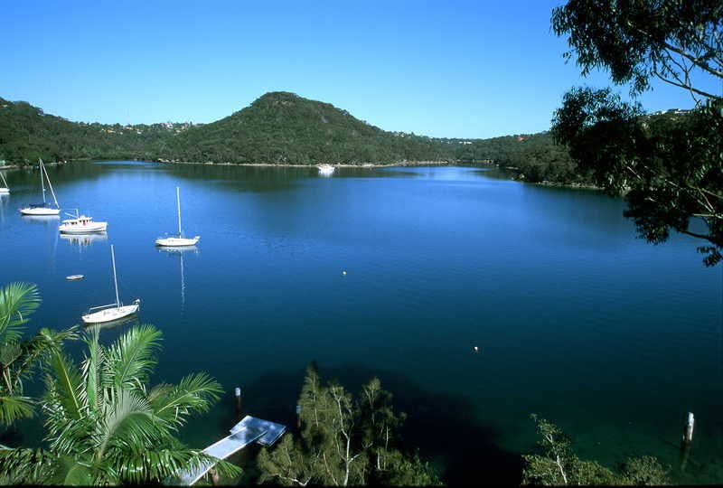 Aaa Tropical Sugarloaf Point Castlecrag