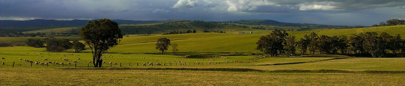 The central tablelands region