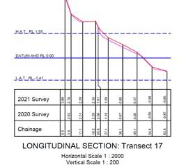 2021 survey result for Norfolk Beach at Victoria Parade