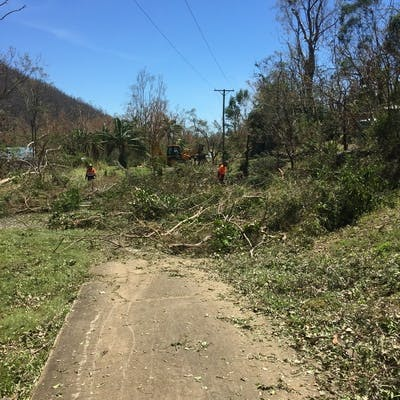 Tree clearing after Cyclone Debbie