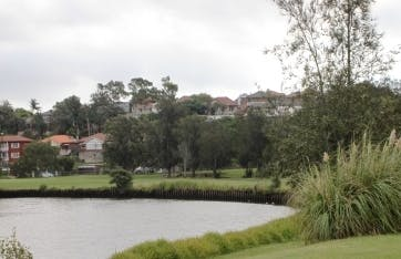 Cooks River At Golf Course Dulwich Hill  Feb 2015