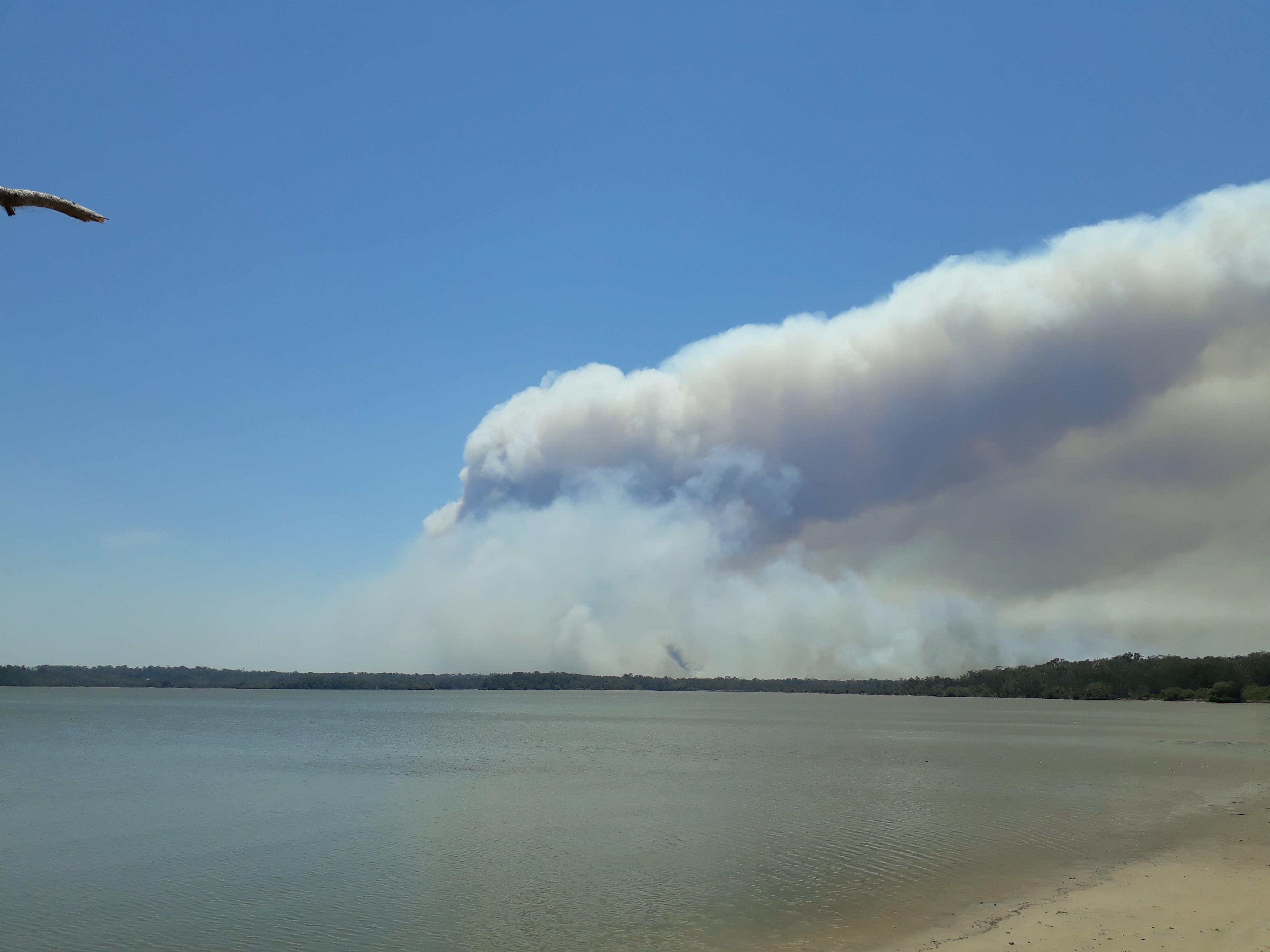 Bushfire on Noosa North Shore