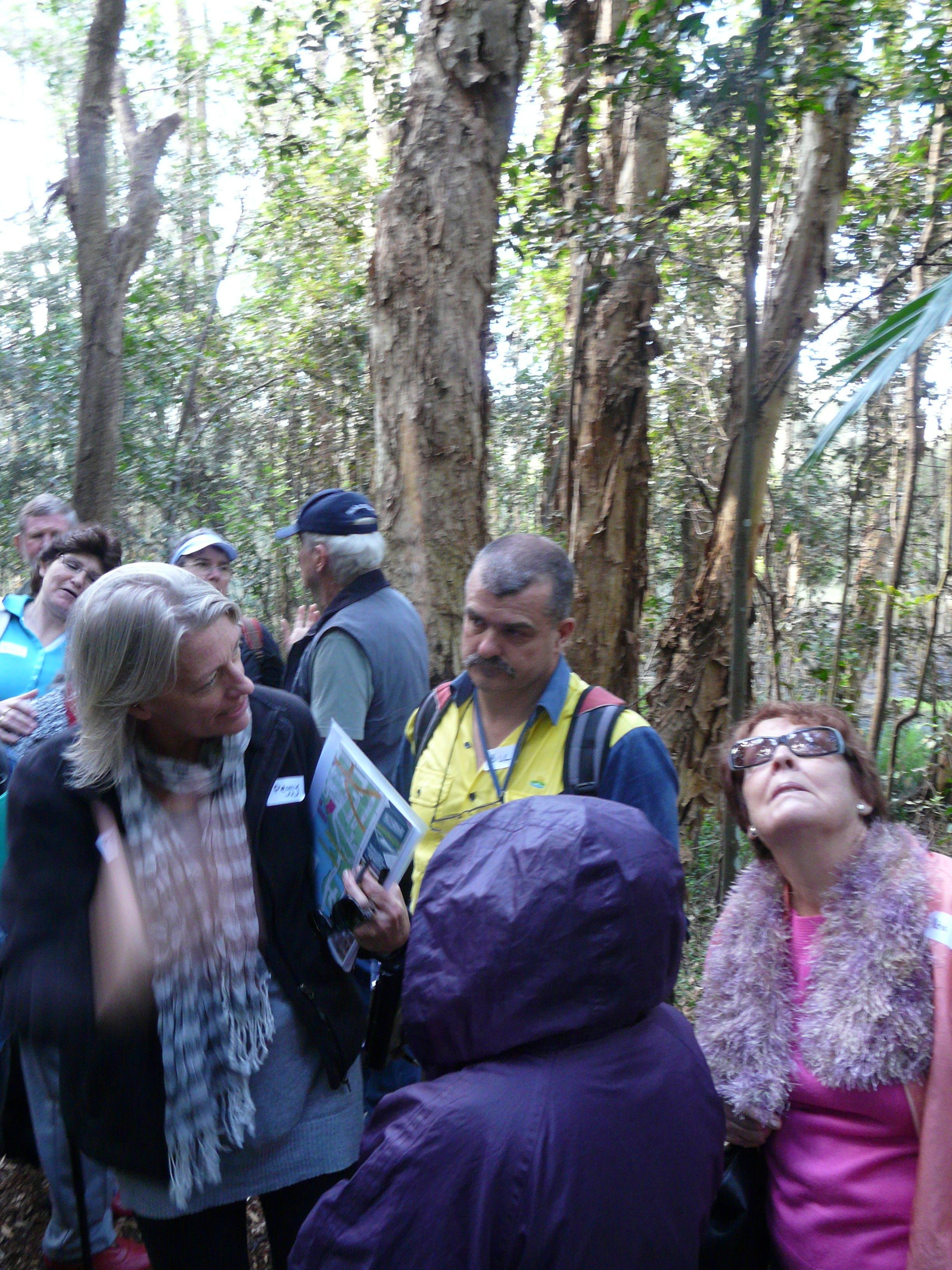 Kooloonbung Creek Walk