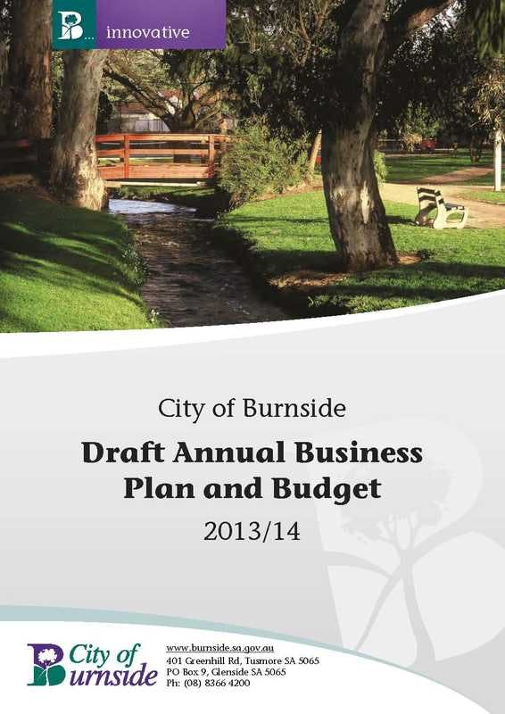 Draft Annual Business Plan and Budget
