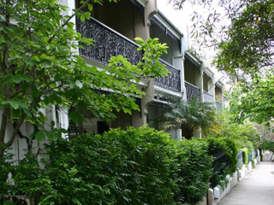 Image of a row of two-storey Paddington heritage terraces with plants and greenery planted in the front gardens.