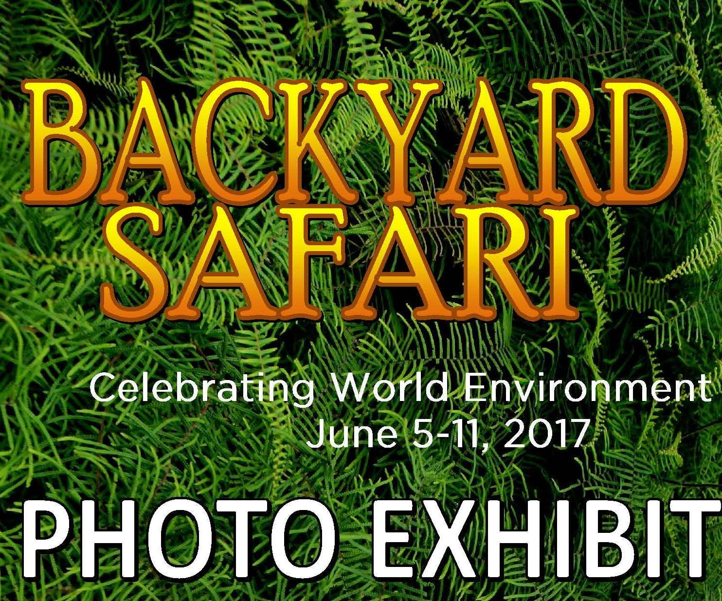 Photo exhibition during World Environment Week 2017