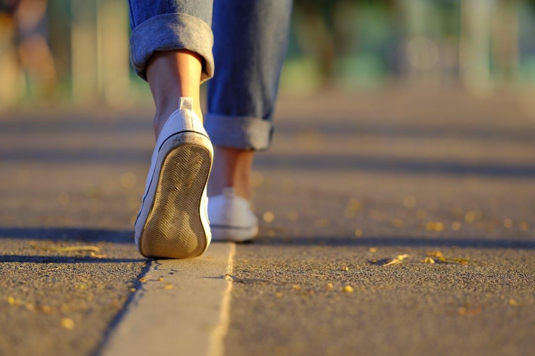 Shutterstock 527133979