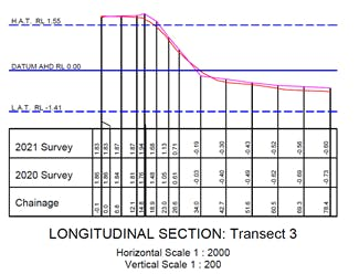 2021 survey result for central Morwong Beach
