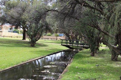 Bodkin Park drainage channel