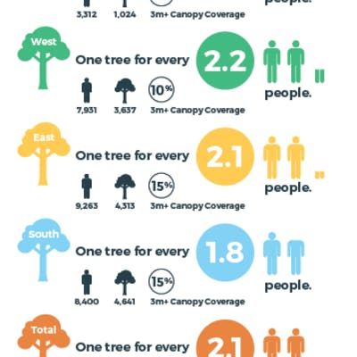 Person to Tree Ratio