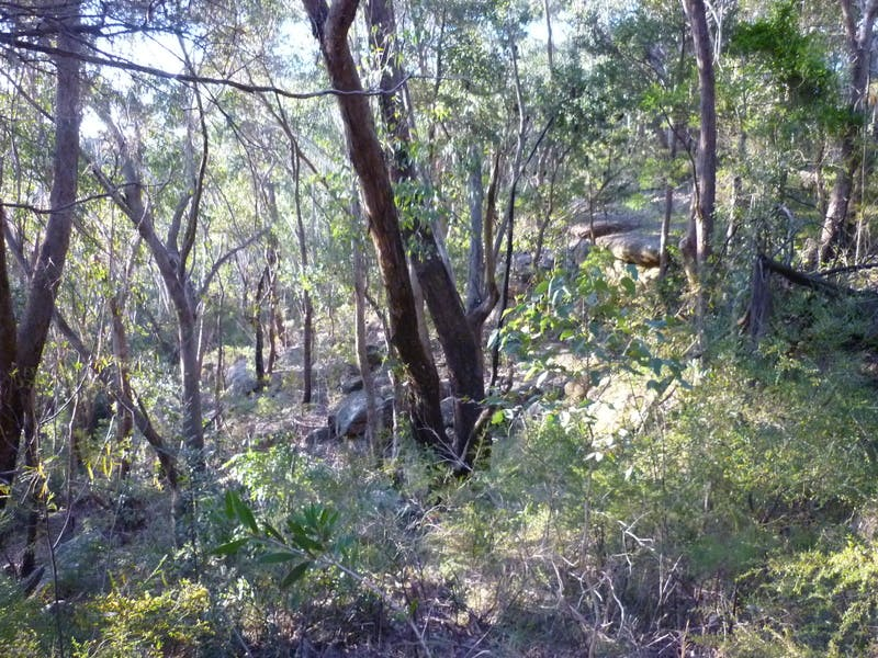 Bushland showing rock drop off down slope, likely site for artefacts - Batman Reserve
