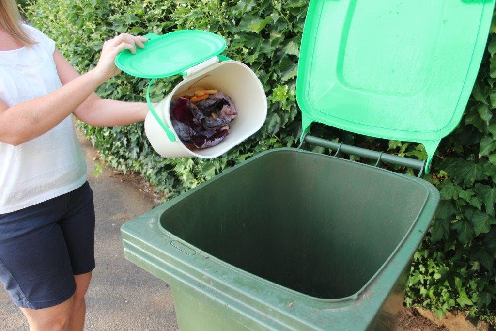 From Caddy to Bin
