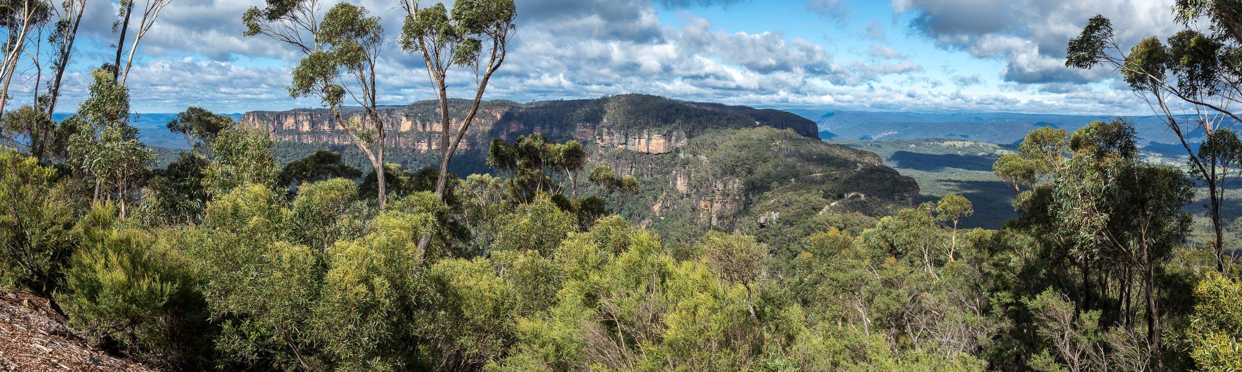 Narrow Neck Lookout Katoomba