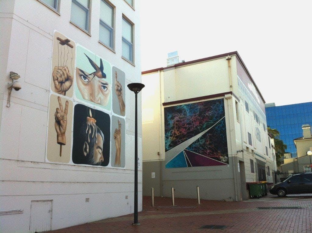 CBD Panel Project 2015, Artist: Kane Horspool (Left) (Trait), Trina Collins (Right) (Ponchoarmy)