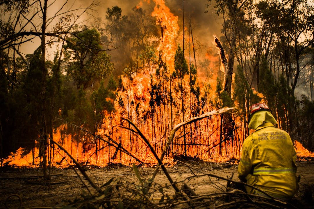 Bush land in flames with fire fighter attempting to put it out.  Image taken by Andrew Flakelar