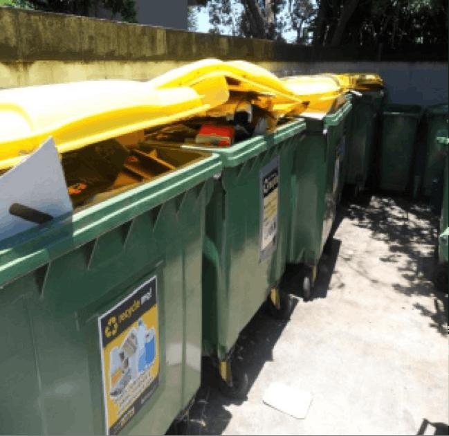 Noosa Shire Waste