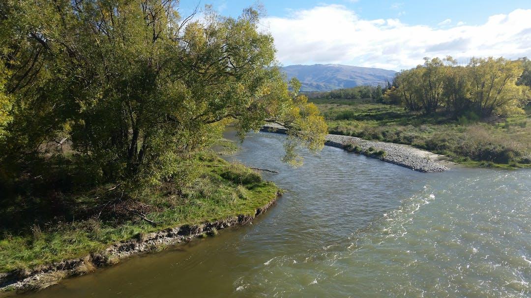 Dunstan creek1