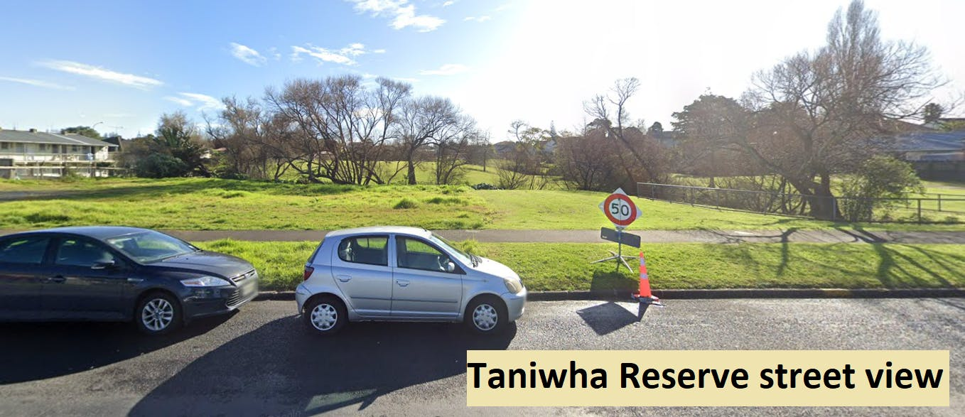 taniwha st view - final.PNG