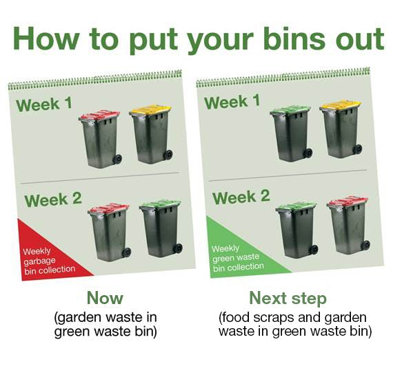 How to put your bins out