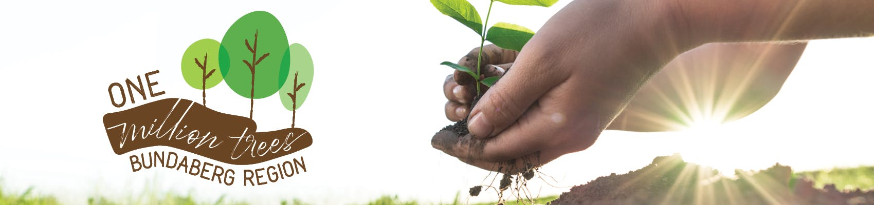 Bundaberg Regional Council has a vision of planting one million thriving trees in the Bundaberg region by 2024