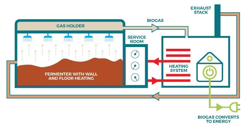 Bioenergy process infographic