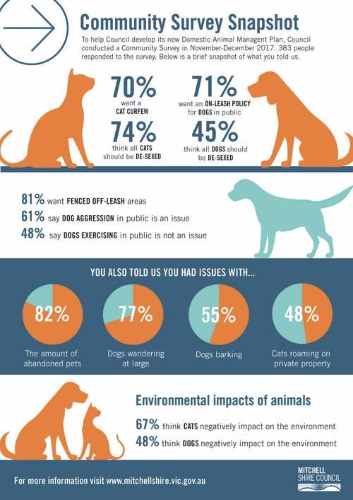 DAM plan Survey infographic (2)-01