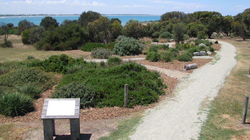 Bashams Beach Food and Medicine Garden - Port Elliot
