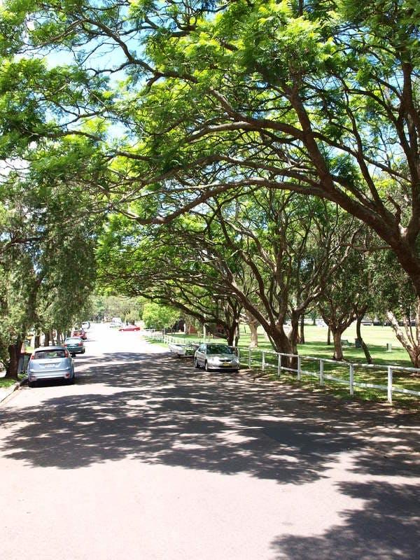 Marrickville South park