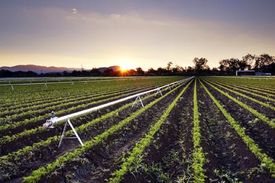 queensland_irrigation