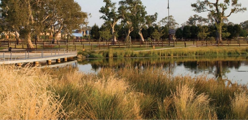 Concept designs show Washpool Creek transformed into a thriving natural waterway to be enjoyed by the entire community