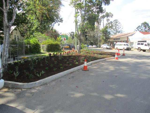 Early view of tree plantings 25-10-17