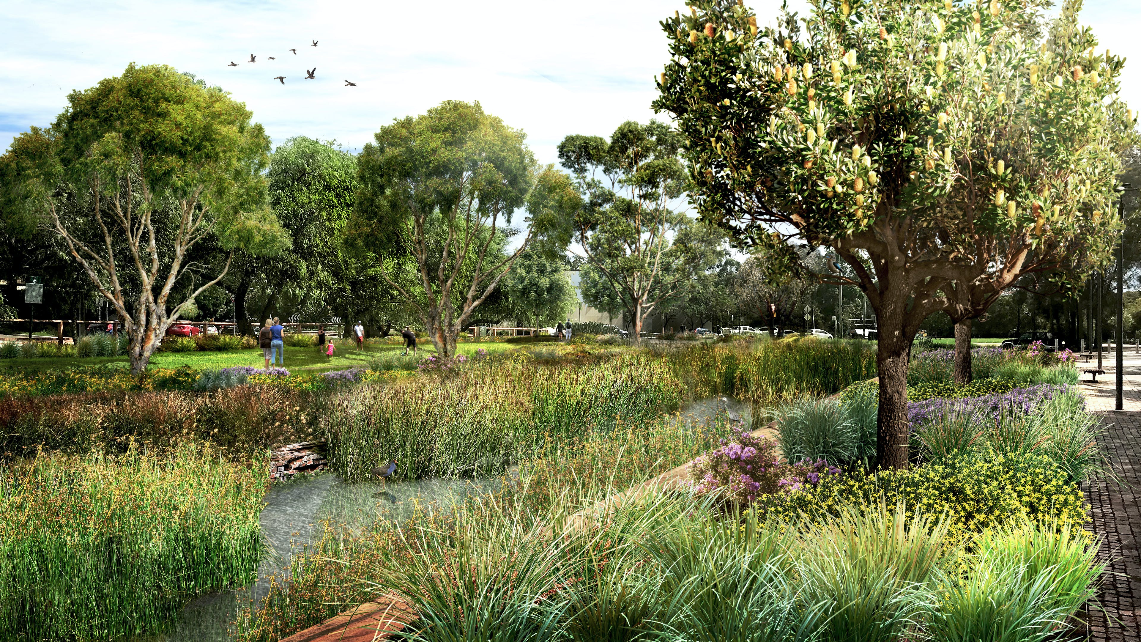 An artist's impression of Federal Park once the wetland has been created.